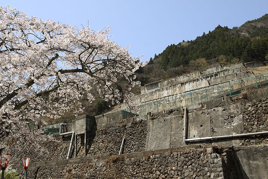 投稿者:前畑温子さん<br>コメント:かつて東洋一と呼ばれた神子畑選鉱場跡。春になると桜が咲き乱れる。