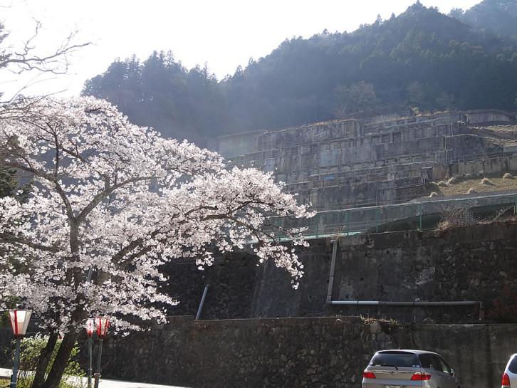 選鉱場と桜のコラボ!